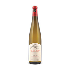 VINELAND ESTATES ELEVATION ST. URBAN VINEYARD RIESLING