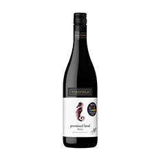 PROMISED LAND SHIRAZ